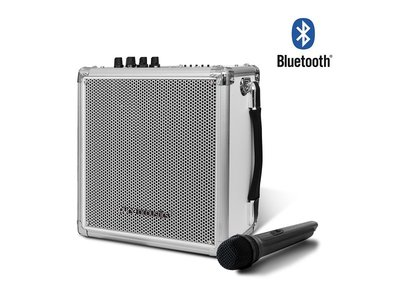 pure acoustic mcp50 zilver